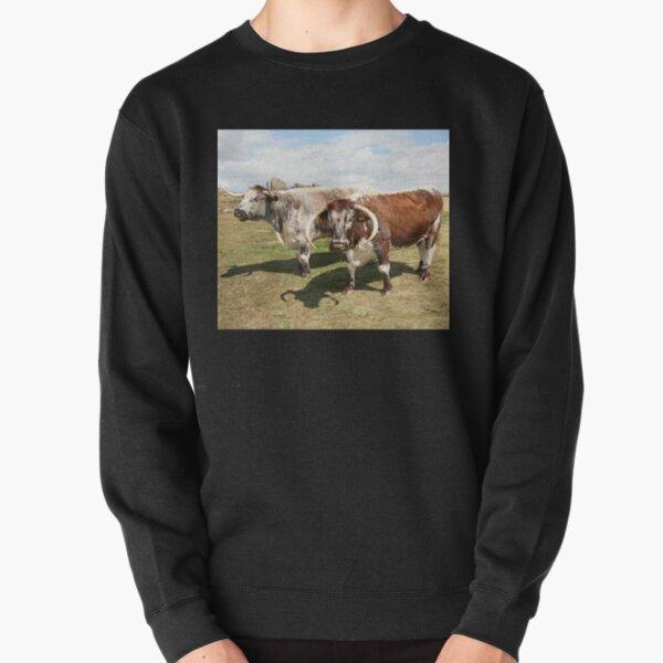 english longhorn cattle Pullover Sweatshirt