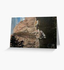 Fallen Rock- Willow Lake Greeting Card