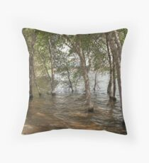 Wadding in the Water- Willow Lake Throw Pillow