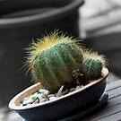 Prickly friend... by GoldZilla