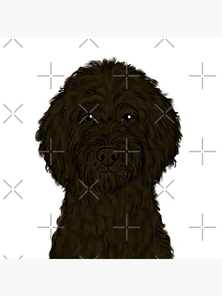 Chocolate Brown Goldendoodle  by ktscanvases