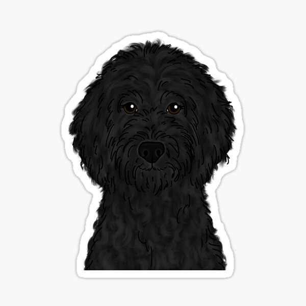 Black Goldendoodle  Sticker