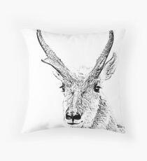 ANTELOPE BUCK SKETCH Throw Pillow