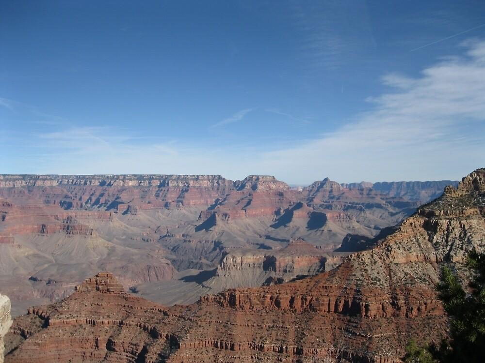 The Grand Canyon by NickBentonArt