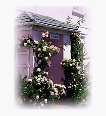 Pink Cottage Photographic Print