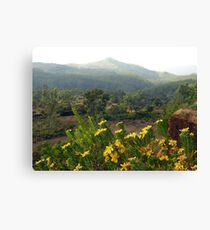 Atop the World (Karnataka, India) Canvas Print