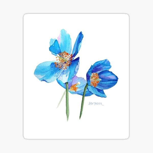 Blue Poppy Trio Sticker