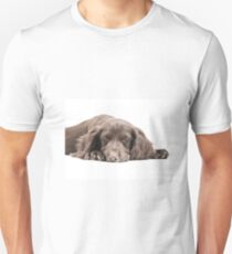 Let Sleeping Dogs Lie Unisex T-Shirt