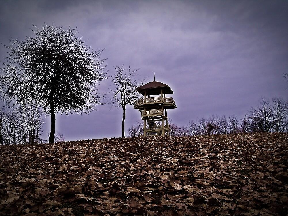 Climb To Safety  by Paul Lubaczewski