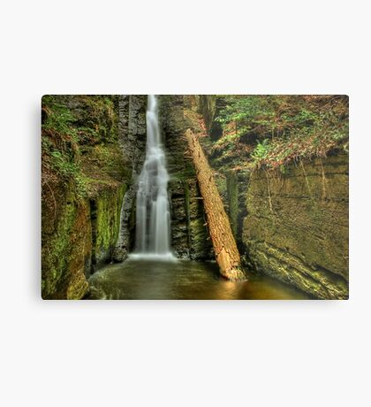 Beautifully Confined Metal Print