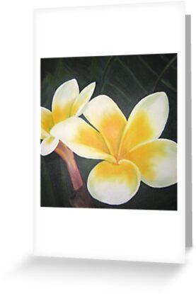 frangipani or two by Almeta