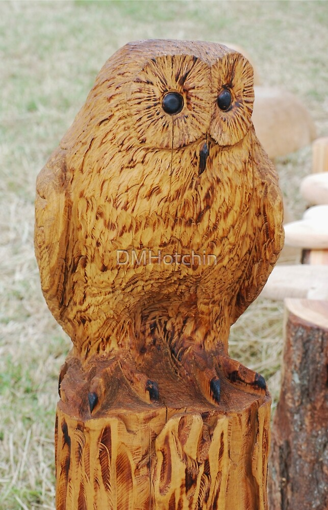Wooden Owl by DMHotchin