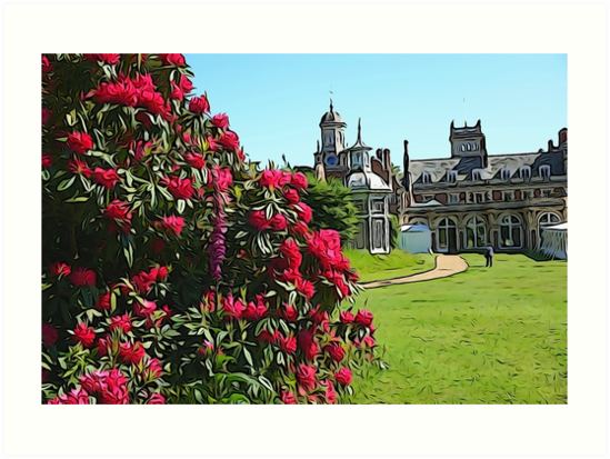 Illustrated Rhododendrons & the clock tower by NikkiMatthews