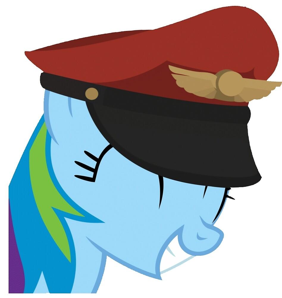 Team captain Rainbow dash by manne26