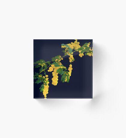 Wattle Fever - Navy Acrylic Block