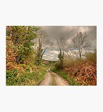Rural Clare road Photographic Print