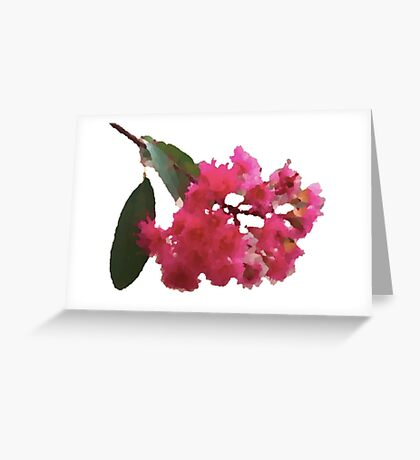 Island Eucalypt Greeting Card