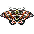 Traditional Large Butterfly Tattoo Design by FOREVER TRUE TATTOO