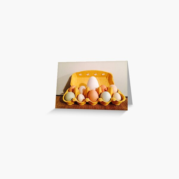 Vauxhall City Farm - Easter (Eggs) Greeting Card