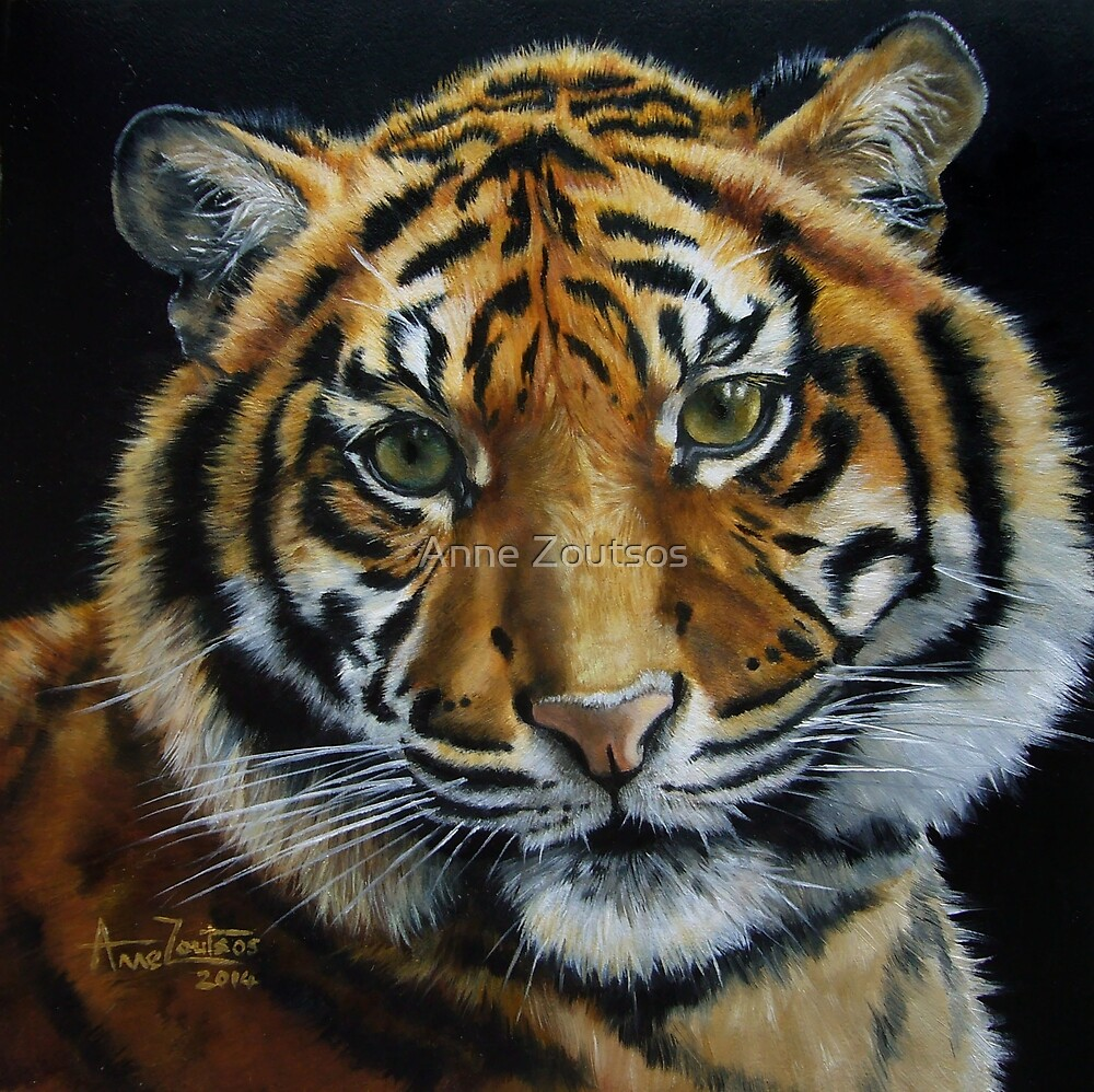Tiger Light by Anne Zoutsos