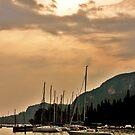 the boats at lake garda by xxnatbxx