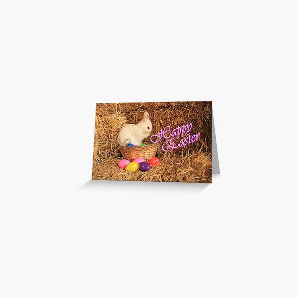 Vauxhall City Farm - Easter Rabbit 2 - Text (Quinn) Greeting Card