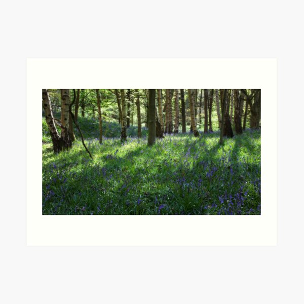 Springtime In Ilkley Art Print
