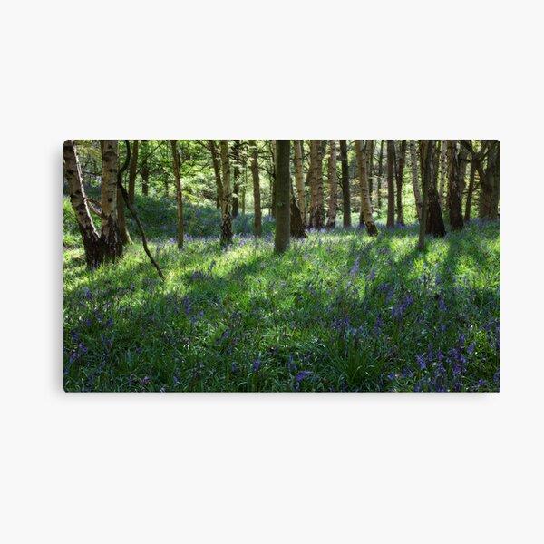 Springtime In Ilkley Canvas Print