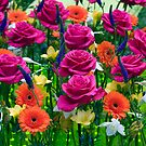 Blooming spring  by Wildcat123
