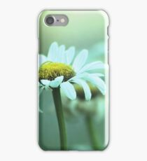 Daisies in the Mist iPhone Case/Skin