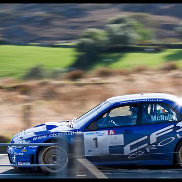 Rally of the Lakes 2010 - S7 - Tim McNulty by DataStream