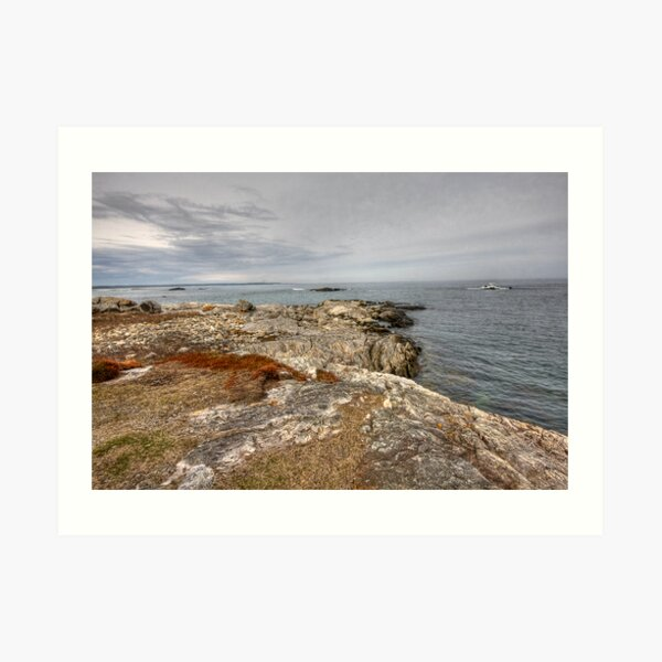 From Land to Sea Art Print