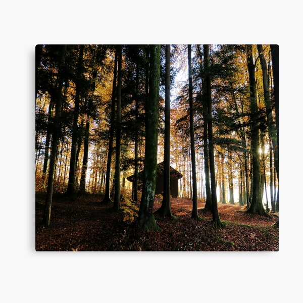 Haus in Autumn forest Canvas Print