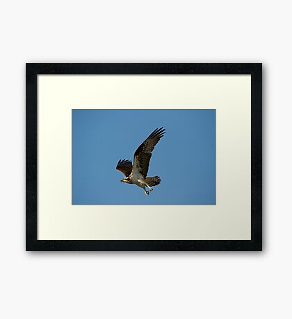 Flying Fortress Framed Print