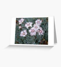 Coreopsis Swirl Greeting Card