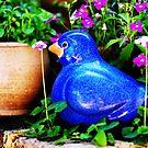 friends' garden 2 by nadine henley