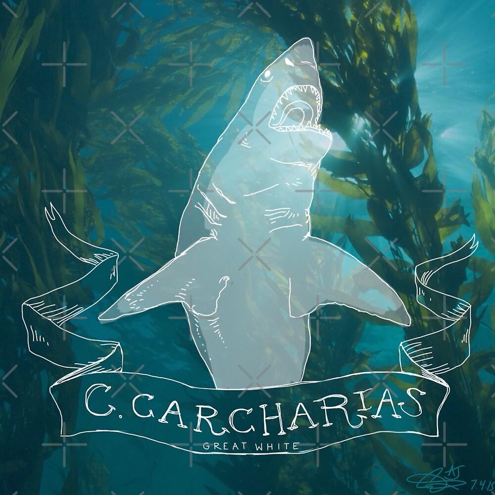 Killer Queen- Great White Shark by aquariumjazz