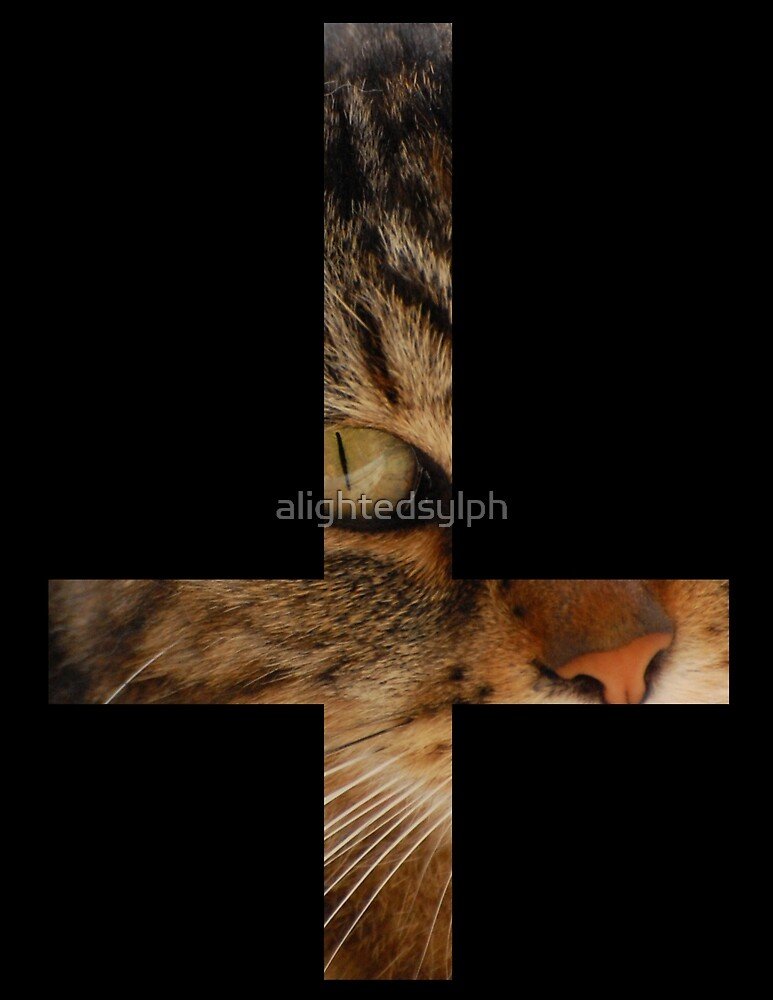 Cat Cross by alightedsylph