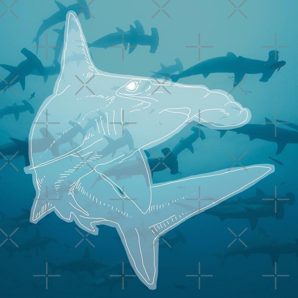Hammerhead Shark by aquariumjazz