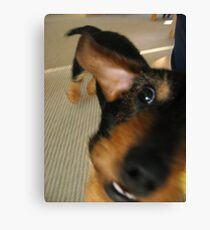 Goofy as a Dog Canvas Print