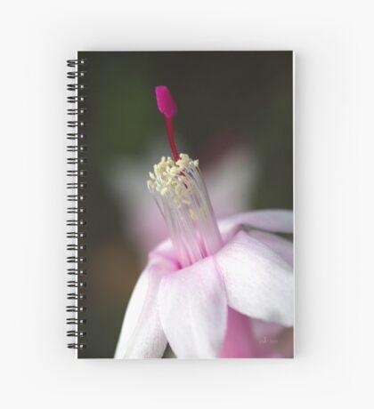 Pink Zygocactus Spiral Notebook