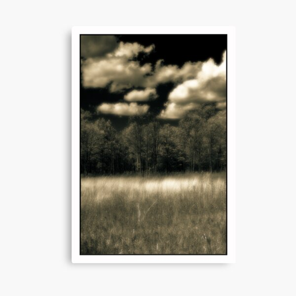 Prairie In Spring Kitty Todd Nature Preserve Canvas Print