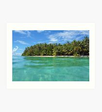 Tropical island shore with luxuriant vegetation Art Print