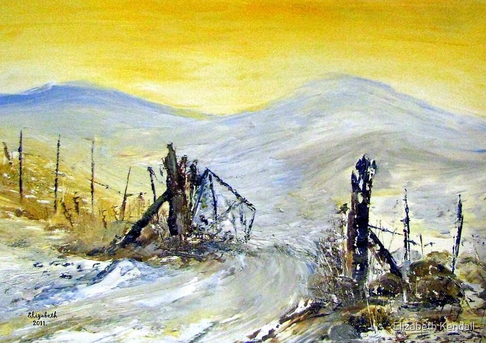 Winter on a farm in the Karoo by Elizabeth Kendall
