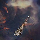 Sunken Treasure by Cloudlingpics