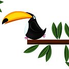 Toucan  by Phil  Brown