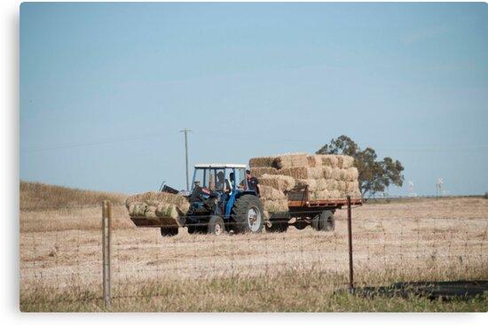 Hay Truck by Brian Lea