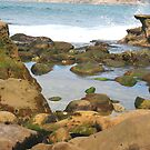 View From the Tide Pool by Heather Friedman
