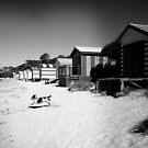 Mornington Peninsula  by Rosina  Lamberti