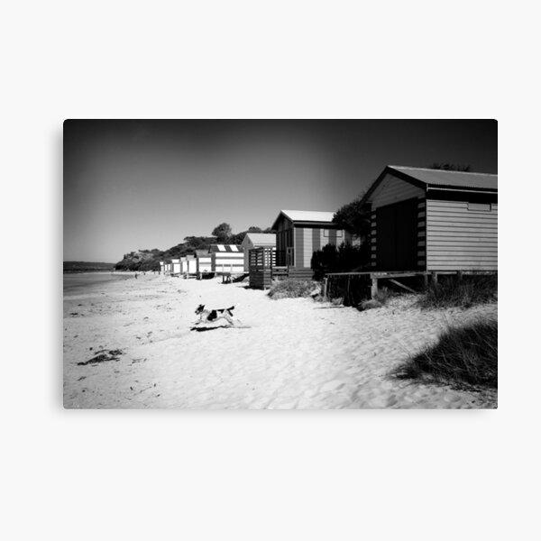Mornington Peninsula  Canvas Print